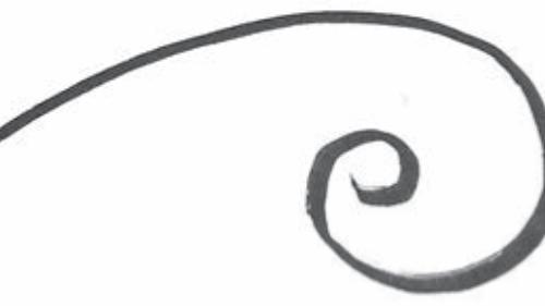 Logarithmic spiral.