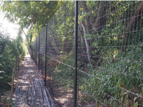 Plastic-coated deer fence (Amor-Flex) in Eastern Shore, MD.