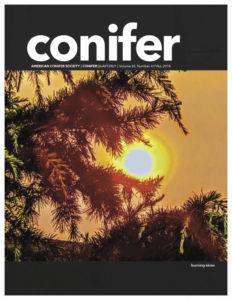 Conifer Quarterly Fall 2018