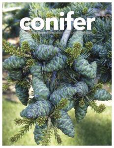 Conifer Quarterly Spring 2019