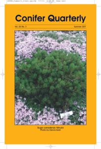 Conifer Quarterly Summer 2011