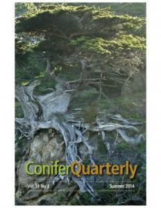 Conifer Quarterly Summer 2014
