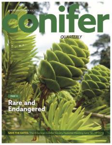 Conifer Quarterly Summer 2017