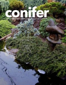 Conifer Quarterly Summer 2018