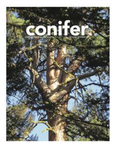 Conifer Quarterly Summer 2019