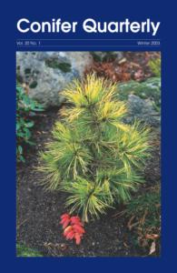 Conifer Quarterly Winter 2003
