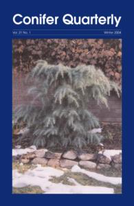 Conifer Quarterly Winter 2004