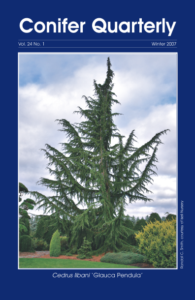 Conifer Quarterly Winter 2007