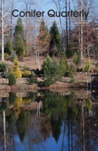 Conifer Quarterly Winter 2013