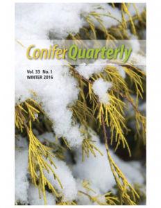 Conifer Quarterly Winter 2016