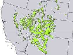 Native range of <em>Juniperus osteosperma </em>