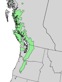 native range of <em>Abies amabilis </em>