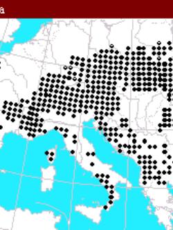 natural range of <em>Abies alba </em>