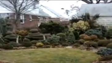 A Visit to Ed Rezek's Garden