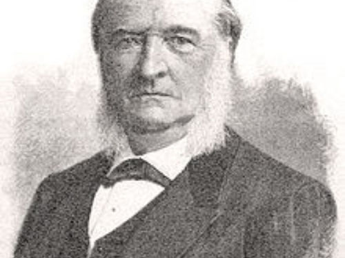 """<em>Picea maximowiczii</em>, as described in 1867 by Eduard August von Regel (1815–1892) ex Maxwell Tylden Masters (1833–1907) in <em>The Gardeners' Chronicle</em>, new series 11, is commonly known as Japanese bush spruce; as well asヒメバラモミ (hime baramomi) in the Japanese language. The species name honors Carl Maximowicz (1827 - 1891), former curator of the St. Petersburg Botanical Garden herbarium, who had been in Japan exploring the local flora in 1862. The common name in Japan, """"hime baramomi"""" means """"daughter of the baramomi,"""" which is Tigertail spruce (Picea torano). This species closely resembles P. torano, differing mainly in having smaller cones and resinous winter buds. There is some question about the differences — or, if there are differences — between <em>Picea maximowiczii </em>var<em>. maximowiczii</em> and <em>Picea maximowiczii </em>var<em>. senanensis</em> that can be found in the pull-down menu of trinomials, at left."""