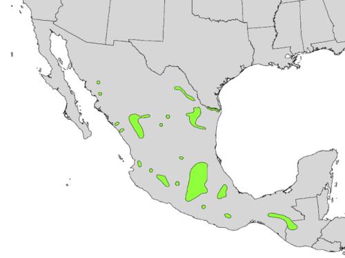 native range of <em>Taxodium mucronatum</em>