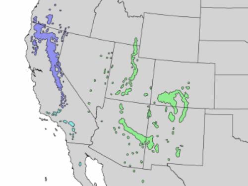 natural range of <em>A concolor </em>var. <em>concolor </em>in green and var. <em>lowiana </em>in blue.