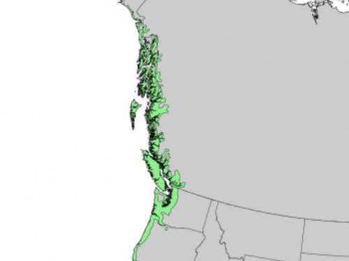 natural range of <em>Picea sitchensis </em>