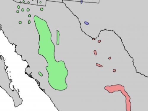 Natural range of <em>Pinus arizonica </em>varieties.