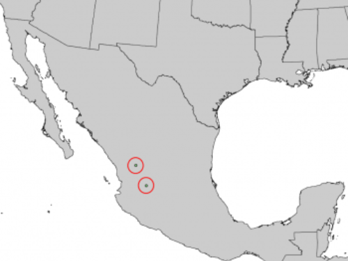 natural range of <em>Pinus maximartinezii </em>