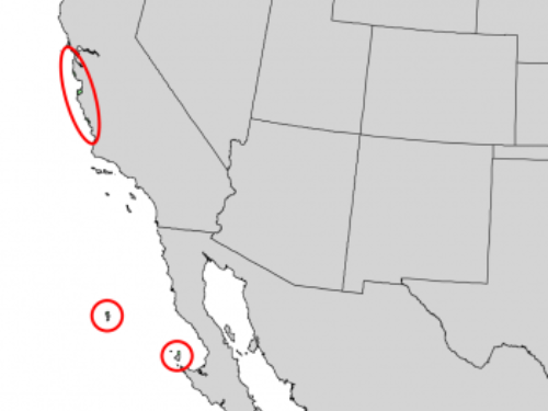 natural range of <em>Pinus radiata </em>