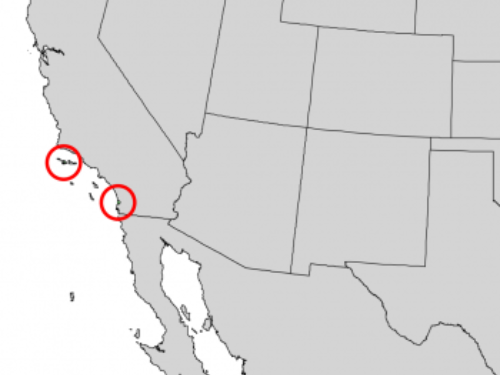 natural range of <em>Pinus torreyana </em>