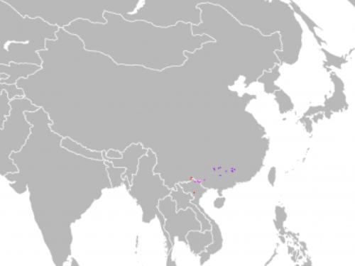 natural range of <em>Pinus wangii </em>