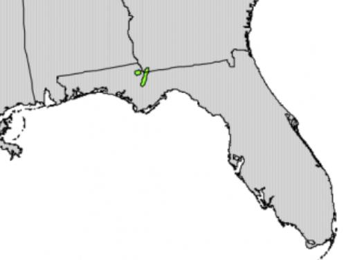 natural range of <em>Torreya taxifolia </em>