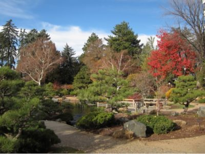 The Japanese Garden at the Denver Botanic Garden