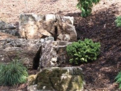 Limestone in the Dancers Garden
