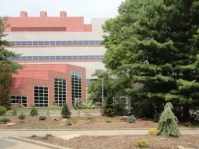The Eckstein Medical Building Conifer Garden