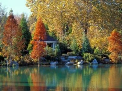 The lake and gazebo in autumn