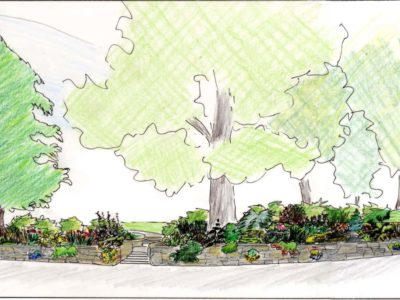 Elevations for the proposed Conifer Garden