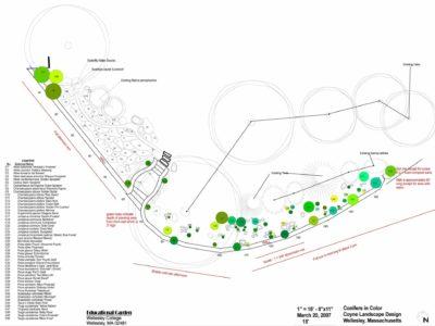 Proposed plantings - green circles represent conifers