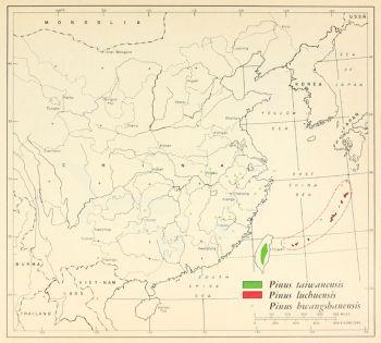 natural range of <em>Pinus taiwanensis </em>