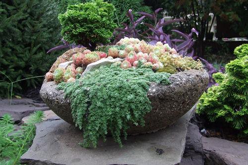A larger hypertufa container of conifers, succulents, and low-growing plants. Photo: plantman56.blogspot.com
