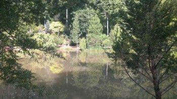 The Cox Arboretum in Canton, GA
