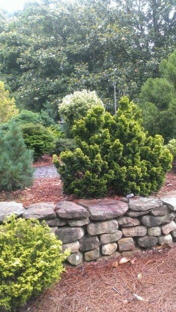Smith-Gilbert Gardens in Kennesaw, GA
