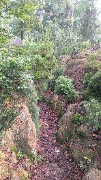 The Vista Garden of Kimberly and Jody Karlin