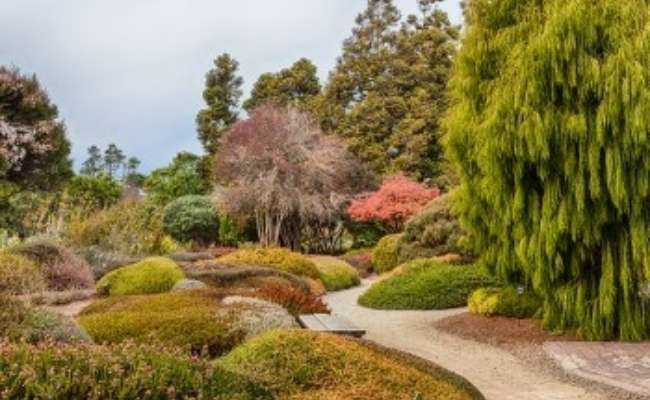 $1 Admission Day at Mendocino Coast Botanical Gardens