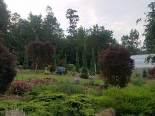 The garden of John Monroe, photo by John