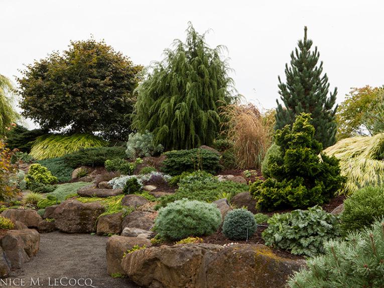 Iseli's display gardens are breathtaking