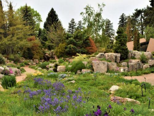 Denver Botanic Garden Alpine Garden