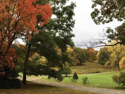 The Frelinghuysen Arboretum in Autumn. Photo by Kathy Lee via Instagram