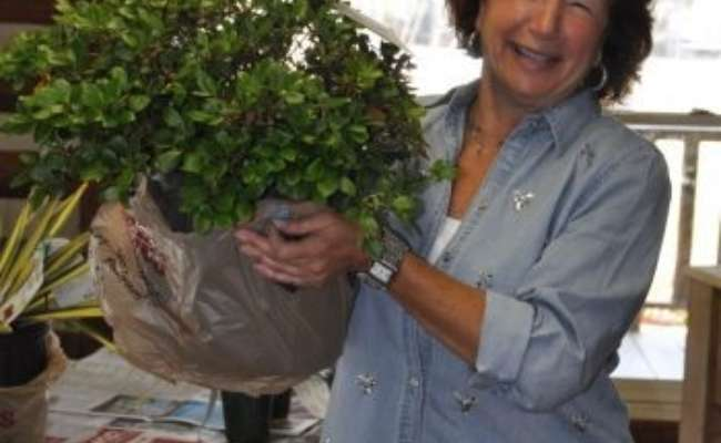 ACS Names Barbie Colvin to New Post of Reference Garden Coordinator