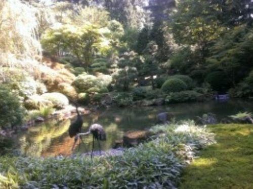 A serene scene at the Portland Japanese Garden