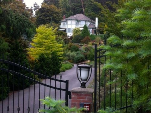 The Albers' house and garden are on a bluff in East Bremerton, WA. What was once an acre of lawn with some old fruit trees is now a four acre preserve with over 1,600 species of plants dominated by conifers.