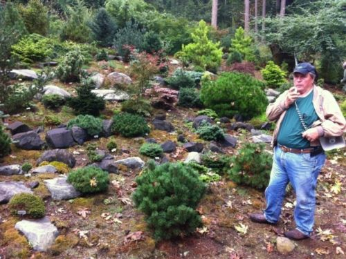 Bob Fincham conducted a tour of his Coenosium Gardens in Eatonville Sunday, the concluding event of the ACS Western Regional Meeting. Here, with portable loudspeaker in hand, he talks about a new conifer & rock garden he's installed.