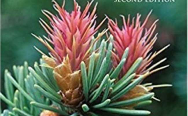 Adrian Bloom's Newly Revised 'Gardening with Conifers'