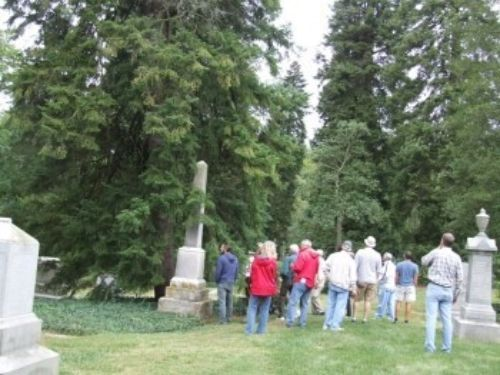The ACS group looking up at the original Abies cilicica 'Spring Grove' broom at Spring Grove Arboretum